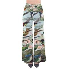 Beautiful Bird Pants