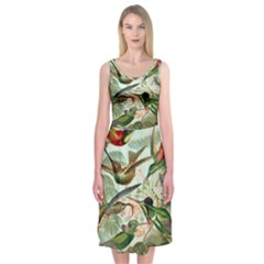 Beautiful Bird Midi Sleeveless Dress