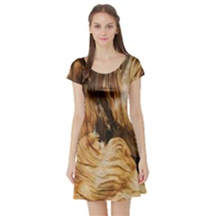 Brown Beige Abstract Painting Short Sleeve Skater Dress