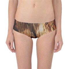Brown Beige Abstract Painting Classic Bikini Bottoms