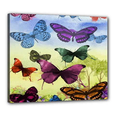 Butterfly Painting Art Graphic Canvas 24  x 20