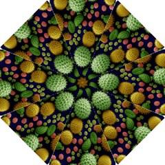 Colorized Pollen Macro View Hook Handle Umbrellas (small)
