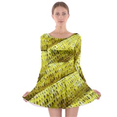 Corn Grilled Corn Cob Maize Cob Long Sleeve Skater Dress