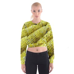 Corn Grilled Corn Cob Maize Cob Women s Cropped Sweatshirt