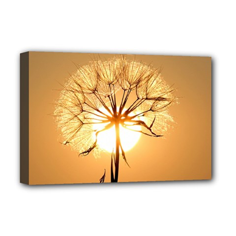 Dandelion Sun Dew Water Plants Deluxe Canvas 18  x 12