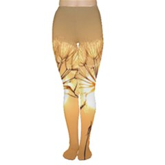 Dandelion Sun Dew Water Plants Women s Tights