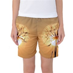 Dandelion Sun Dew Water Plants Women s Basketball Shorts