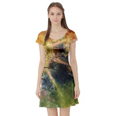 Decoration Decorative Art Artwork Short Sleeve Skater Dress