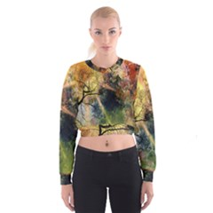Decoration Decorative Art Artwork Women s Cropped Sweatshirt