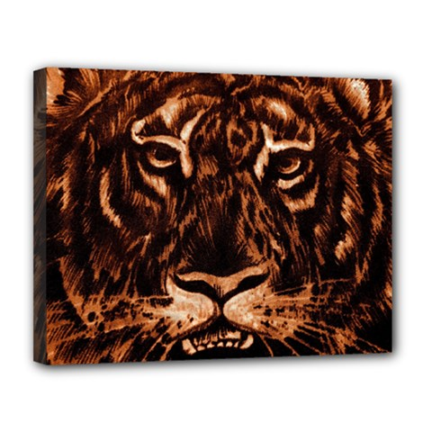 Eye Of The Tiger Canvas 14  x 11