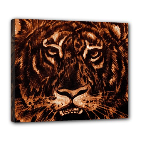 Eye Of The Tiger Deluxe Canvas 24  x 20