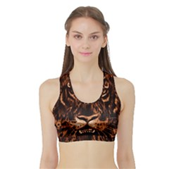 Eye Of The Tiger Sports Bra With Border