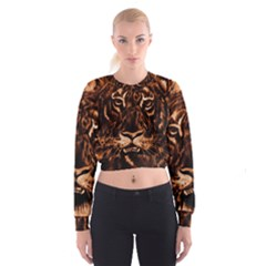 Eye Of The Tiger Women s Cropped Sweatshirt