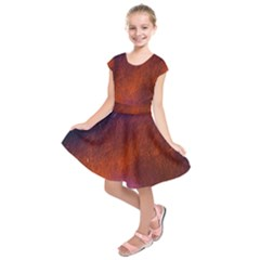 Fire Radio Spark Fire Geiss Kids  Short Sleeve Dress