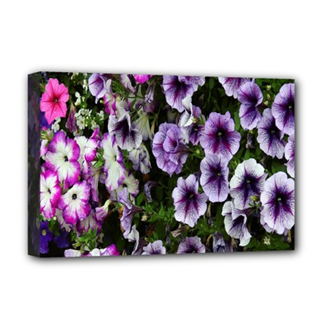 Flowers Blossom Bloom Plant Nature Deluxe Canvas 18  x 12