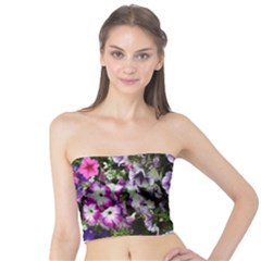 Flowers Blossom Bloom Plant Nature Tube Top