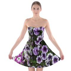 Flowers Blossom Bloom Plant Nature Strapless Bra Top Dress
