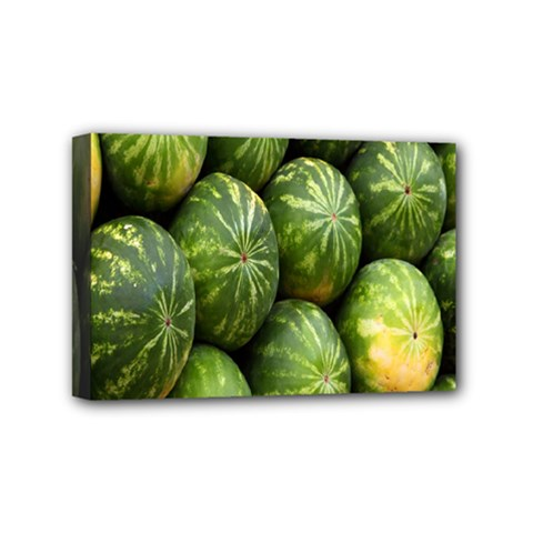 Food Summer Pattern Green Watermelon Mini Canvas 6  x 4