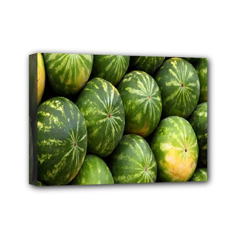 Food Summer Pattern Green Watermelon Mini Canvas 7  x 5