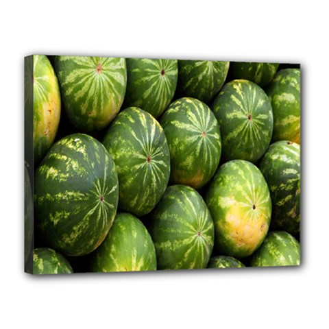 Food Summer Pattern Green Watermelon Canvas 16  x 12