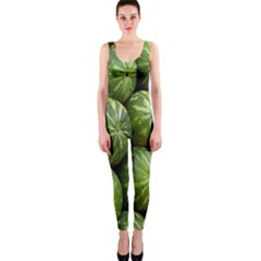 Food Summer Pattern Green Watermelon Onepiece Catsuit