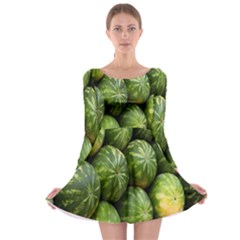 Food Summer Pattern Green Watermelon Long Sleeve Skater Dress