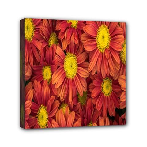 Flowers Nature Plants Autumn Affix Mini Canvas 6  x 6