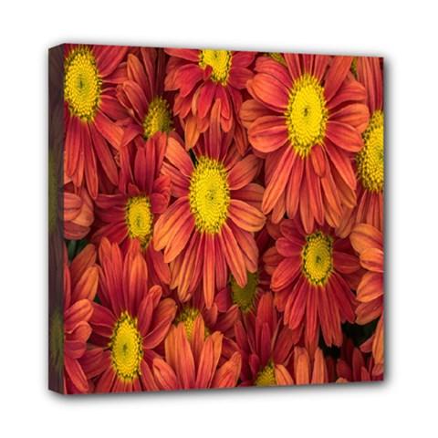 Flowers Nature Plants Autumn Affix Mini Canvas 8  x 8
