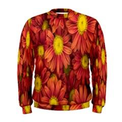 Flowers Nature Plants Autumn Affix Men s Sweatshirt