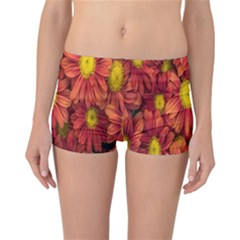 Flowers Nature Plants Autumn Affix Reversible Bikini Bottoms