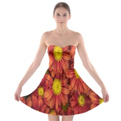 Flowers Nature Plants Autumn Affix Strapless Bra Top Dress