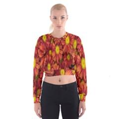 Flowers Nature Plants Autumn Affix Women s Cropped Sweatshirt