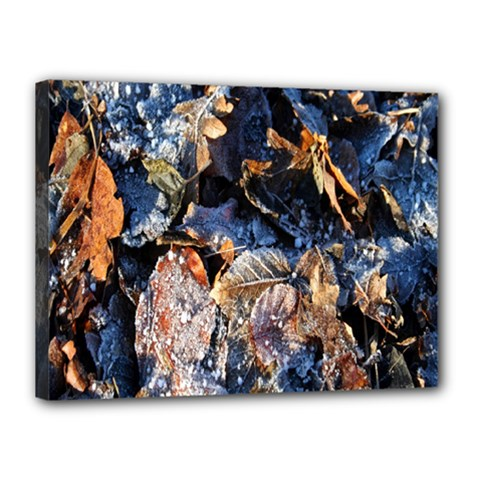 Frost Leaves Winter Park Morning Canvas 16  X 12