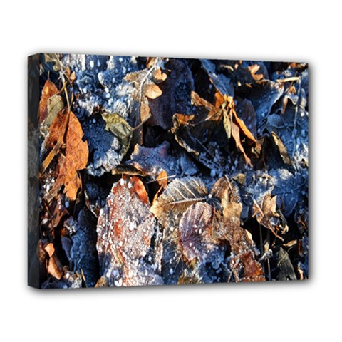 Frost Leaves Winter Park Morning Deluxe Canvas 20  x 16