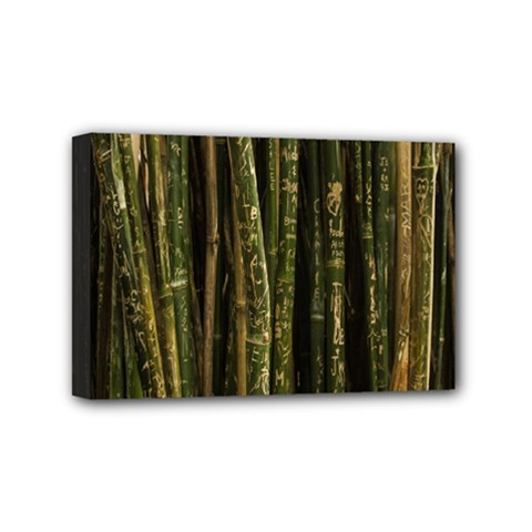 Green And Brown Bamboo Trees Mini Canvas 6  x 4