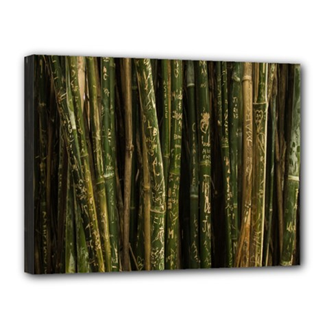 Green And Brown Bamboo Trees Canvas 16  x 12