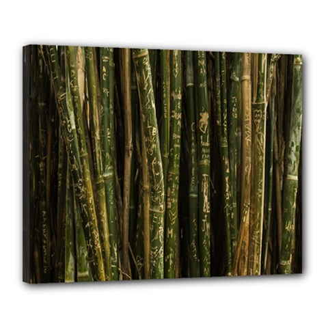 Green And Brown Bamboo Trees Canvas 20  x 16