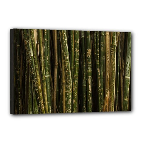 Green And Brown Bamboo Trees Canvas 18  x 12