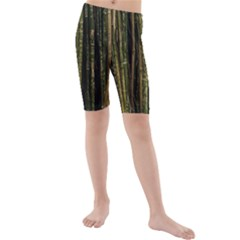 Green And Brown Bamboo Trees Kids  Mid Length Swim Shorts