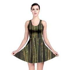 Green And Brown Bamboo Trees Reversible Skater Dress