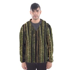 Green And Brown Bamboo Trees Hooded Wind Breaker (Men)