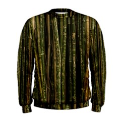 Green And Brown Bamboo Trees Men s Sweatshirt