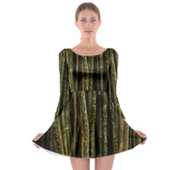 Green And Brown Bamboo Trees Long Sleeve Skater Dress