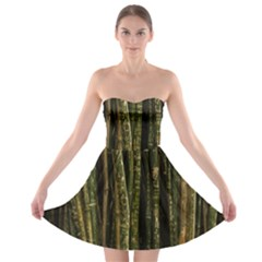 Green And Brown Bamboo Trees Strapless Bra Top Dress