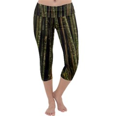 Green And Brown Bamboo Trees Capri Yoga Leggings