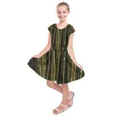Green And Brown Bamboo Trees Kids  Short Sleeve Dress