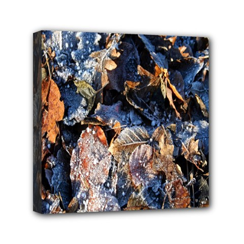 Frost Leaves Winter Park Morning Mini Canvas 6  x 6