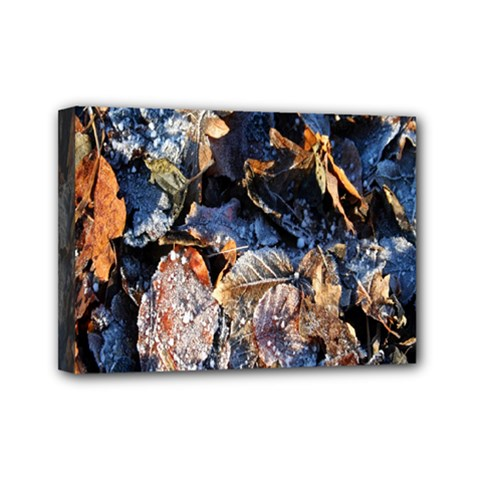 Frost Leaves Winter Park Morning Mini Canvas 7  x 5
