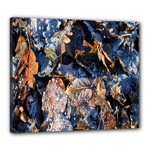 Frost Leaves Winter Park Morning Canvas 24  X 20