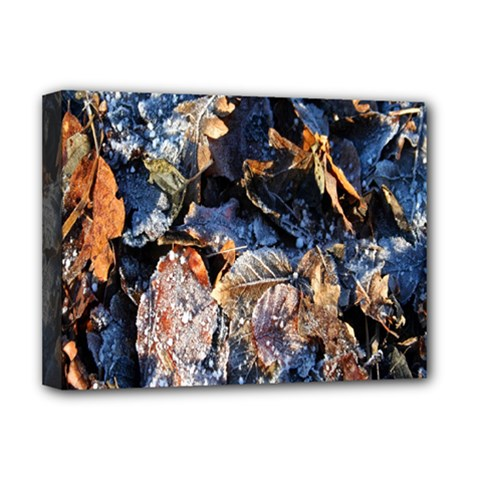 Frost Leaves Winter Park Morning Deluxe Canvas 16  X 12
